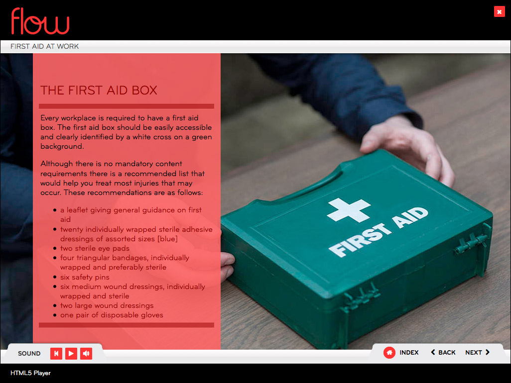 First Aid Awareness Online Course First Aid Online