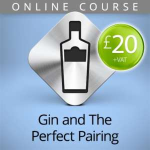 gin pairing online course